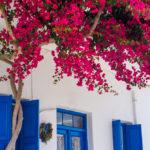 grecia mare